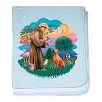 St Francis #2/ R Rback #2 baby blanket