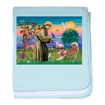 St Francis #2 / Red Husky baby blanket