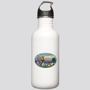 St Francis / dogs-cats Stainless Water Bottle 1.0L