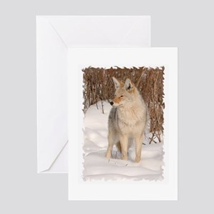Winters Dog Greeting Card