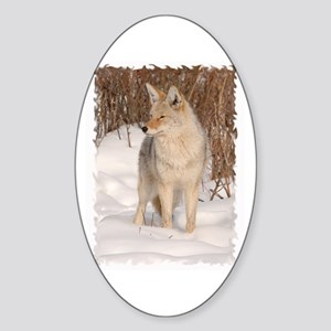 Winters Dog Sticker (Oval)
