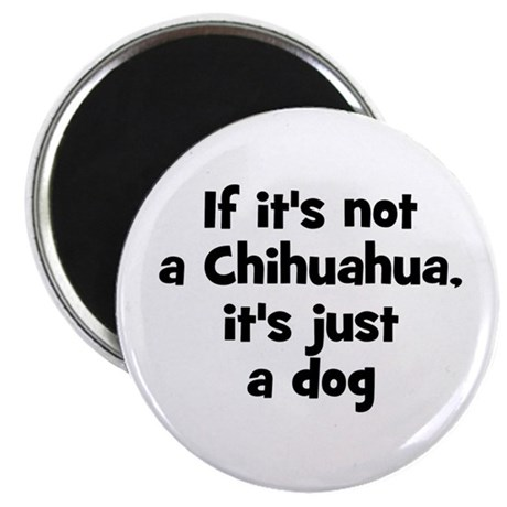 """If it's not a Chihuahua, it's 2.25"""" Magnet (10 pac"""