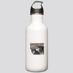 The Pair Stainless Water Bottle 1.0L