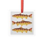 Masu Salmon Cherry Trout Square Glass Ornament