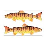 Masu Salmon Cherry Trout Posters