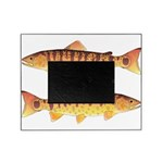 Masu Salmon Cherry Trout Picture Frame