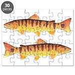 Masu Salmon Cherry Trout Puzzle