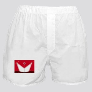Open Mic Night Red Background Boxer Shorts