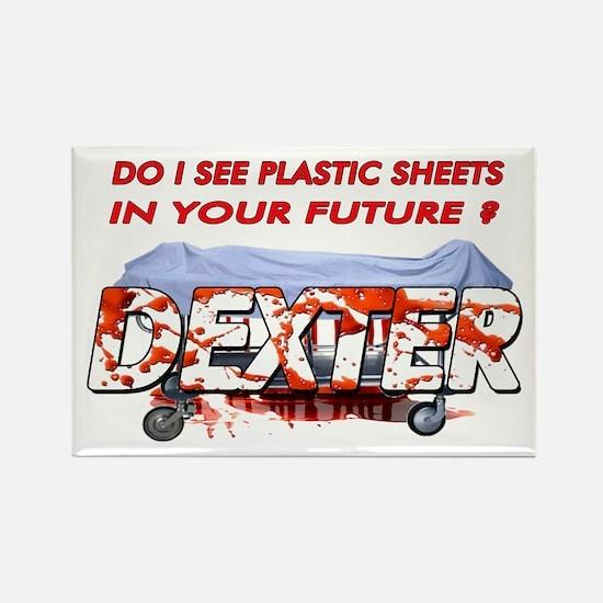 Dexter ShowTime Do I see plas Rectangle Magnet