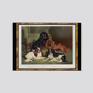 Antique King Charles Spaniels Rectangle Magnet