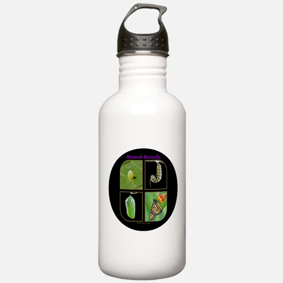 Monarch Metamorphosis Water Bottle