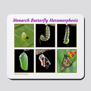 Monarch Metamorphosis Mousepad
