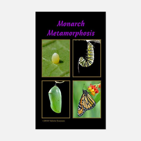 Monarch Metamorphosis Rectangle Decal