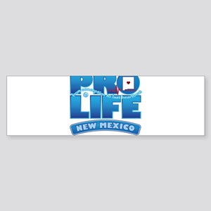 Pro-Life, from conception to Sticker (Bumper)