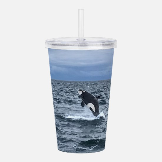 Leaping Orca Whale Acrylic Double-wall Tumbler