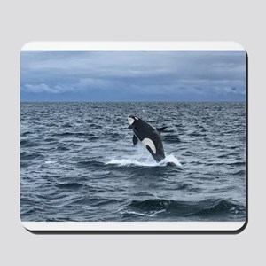 Leaping Orca Whale Mousepad