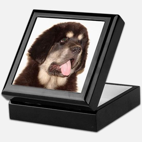 Cool Tibetan mastiff Keepsake Box