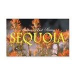 ABH Sequioa 20x12 Wall Decal