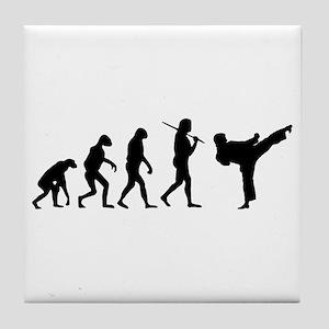 The Evolution Of Karate Tile Coaster