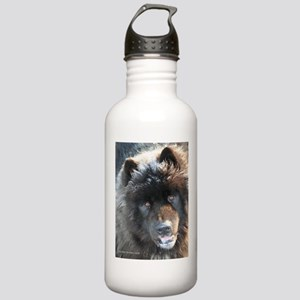 Cats & Dogs Stainless Water Bottle 1.0L