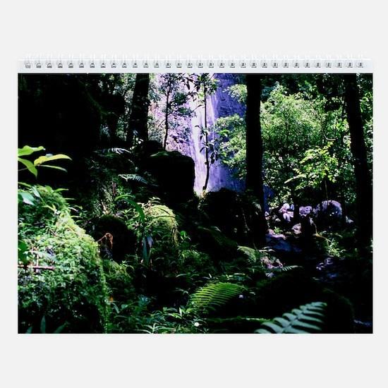 Manoa Falls Trail Wall Calendar