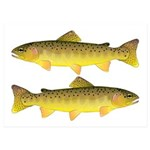 Apache trout 5x7 Flat Cards (Set of 10)