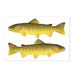 Apache trout Postcards (Package of 8)
