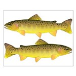 Apache trout Posters