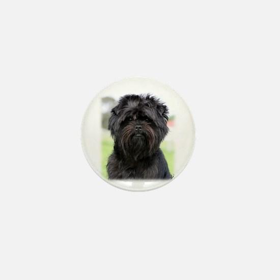 Affenpinscher 9Y516D-049 Mini Button