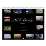 Wild Earth Wall Calendar