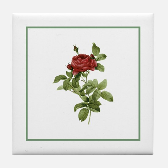 Provencal Green Stripe Red Rose Tile Coaster