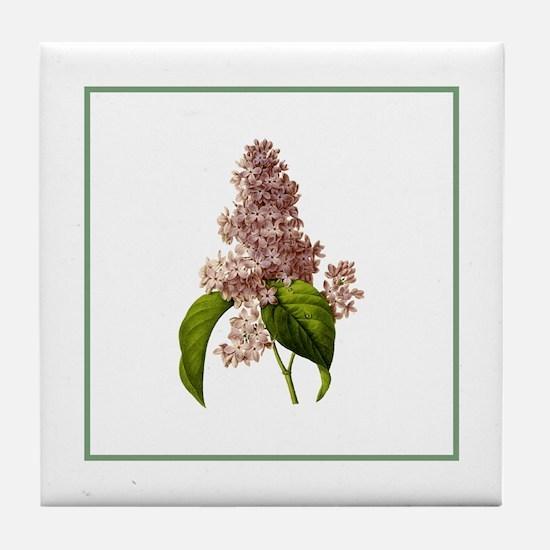 Provencal Green Stripe Lilac Tile Coaster