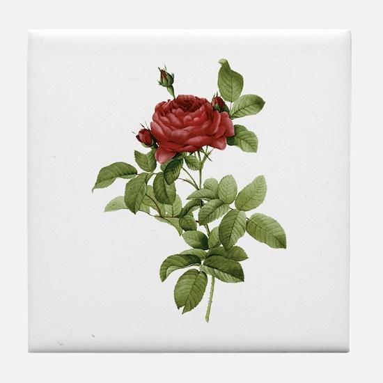 Provencal Red Rose Tile Coaster