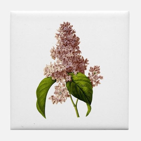 Provencal Lilac Tile Coaster
