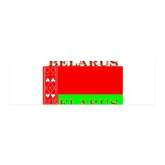 Belarus Belarussian Flag 21x7 Wall Peel