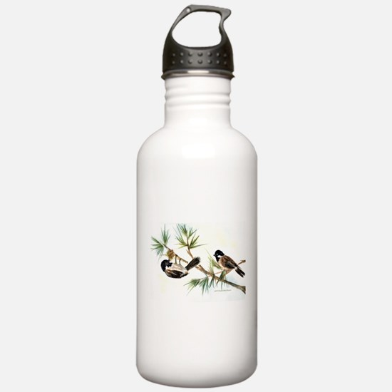 Two Chickadees Water Bottle
