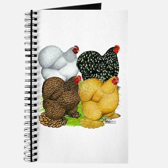 Cochin Assortment Journal