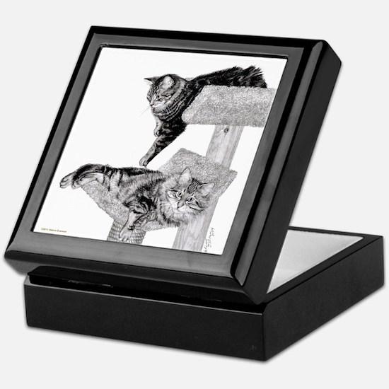 Maine Coon Cats Keepsake Box