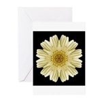 Yellow Gerbera Daisy III Greeting Cards (Pk of 10)