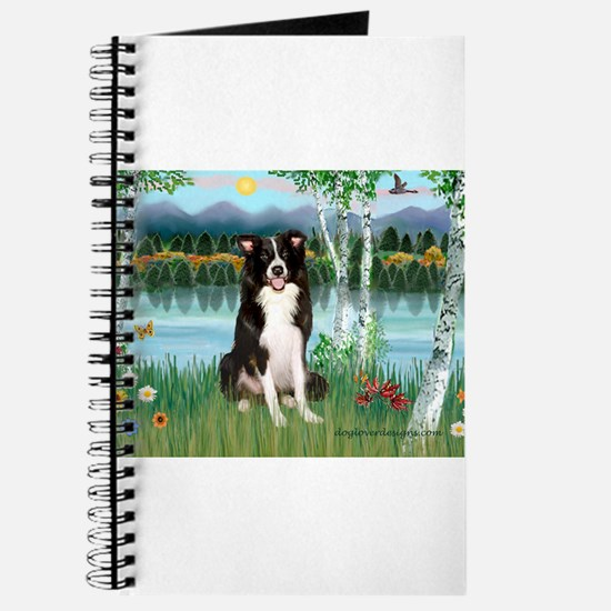 Birches / Border Collie Journal