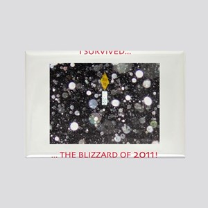 BLIZZARD OF 2011 Rectangle Magnet
