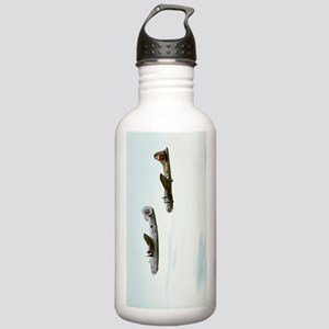 B-24 and B-17 Flying Stainless Water Bottle 1.0L