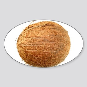 Coconut Sticker (Oval)