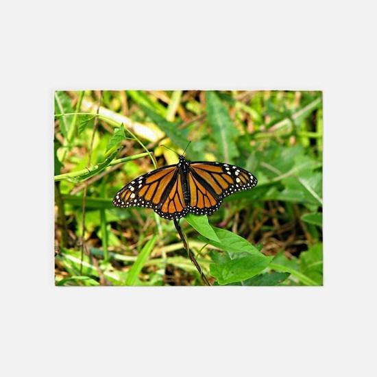 Monarch Butterfly II 5'x7'Area Rug