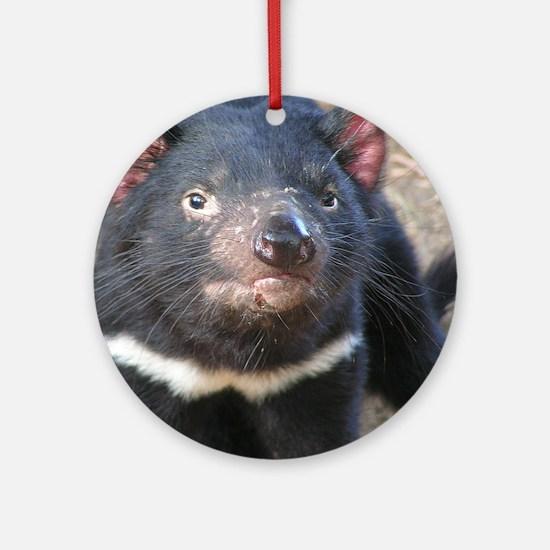 Tasmanian Devil Gifts Ornament (Round)