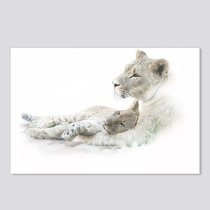 Lioness and Cub Postcards (Package of 8)