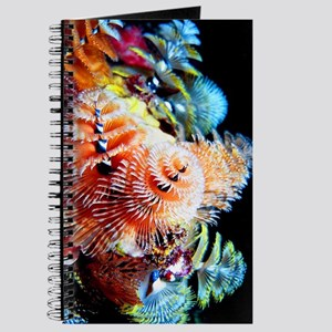 160 Page Journal