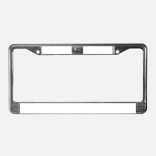 Funny Windows License Plate Frame