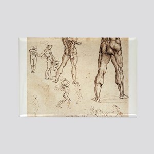 Anatomical Studies Rectangle Magnet