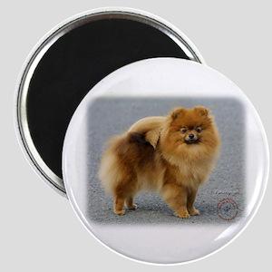 Pomeranian 9R042D-22 Magnet